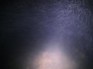 Traversée du parc Puracé de nuit
